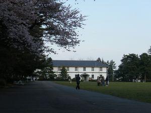 2010桜_榴ヶ岡公園4.jpg