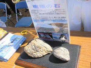 南極の石.jpg